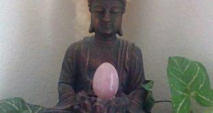 Rose egg Zen